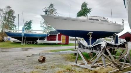 Snipseglandet har i år drunknat i andra aktiviteter och problem, personligen t.ex för många båtar  :)